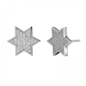 Five Star Shape 925 Silver Earrings